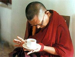 """Lama Thupten Zopa: """"qualsiasi lavoro si faccia anche per ottenere uno chicco di riso, occorre aver presente che tantissimi esseri vengono uccisi o vengono danneggiati""""."""