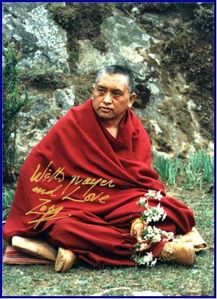 """Lama Zopa: """"Da molti lama abbiamo sentito l'aneddoto sui discepoli di Nagarjuna, che nella vita precedente erano due piccioni, e che mentre erano posati sul soffitto della sua caverna ascoltavano Nagarjuna che recitava""""."""