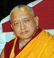 """Lama Zopa Rinpoche: """"Ogni essere senziente ha la natura di Buddha. Persino una zanzara può raggiungere l'illuminazione e la liberazione dall'oceano della sofferenza samsarica se pratica il Dharma""""."""
