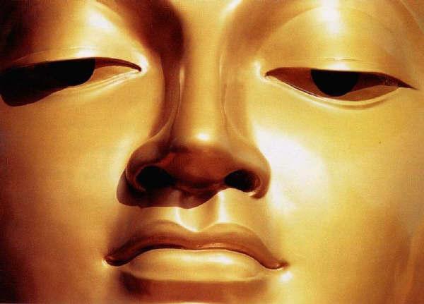 """Buddha Sakyamuni: """"L'uomo saggio, concretamente addestrato nella pratica del retto insegnamento, rimane equanime di fronte alle sensazioni gradevoli e sgradevoli che sorgono nella sua persona""""."""