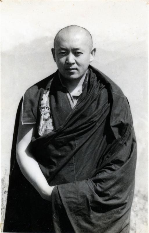 Sua Santità Drikung Kyabgon Chetsang Rinpoche: La meditazione Shinè è solo semplice consapevolezza, focalizzata in modo determinato ma calmo su un oggetto.
