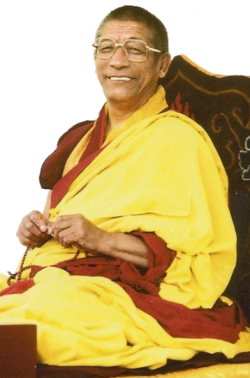 Ghesce Rabten Rinpoche: Il termine samsara è usato metaforicamente per indicare un luogo, un paese o un pianeta, ma la vera esistenza ciclica è precisamente questo processo di essere sbattuti fra piacere o dolore, ricchezza e povertà, malattia e salute, morte e nascita e così via.