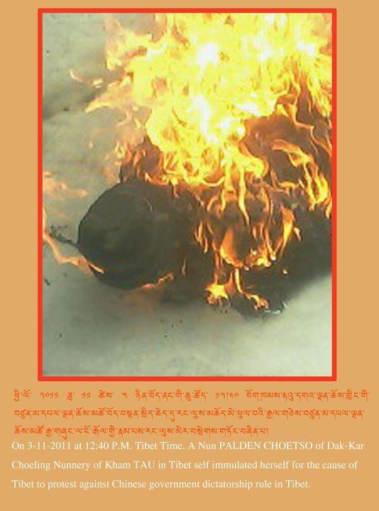 monaca-immolata
