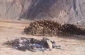 I resti carbonizzati di Lhamo Kyab dopo l'autoimmolazione