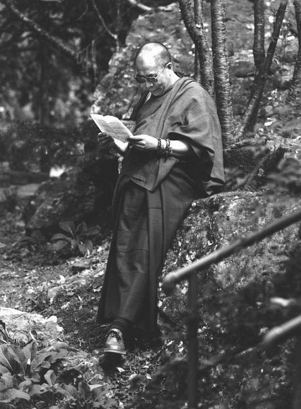 His Holiness the Fourteenth Dalai Lama: Renunciation has two directions of looking. On the one hand, with such an attitude, we look down at the suffering of samsara, with no interest in it, and we feel disgust and the wish to be rid of it completely. On the other hand, we look up at liberation and wish to attain it.