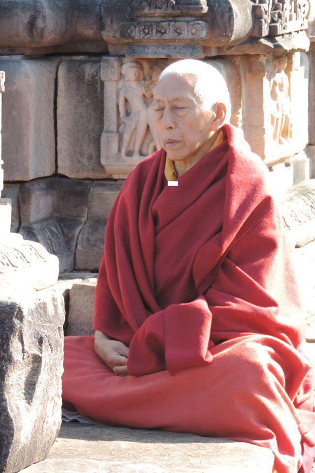 Il Ven. Prof. Samdhong Rinpoche in meditazione.
