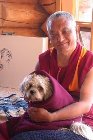 Lama Zopa Rinpoche: Gli svantaggi della rabbia e dell'attaccamento.