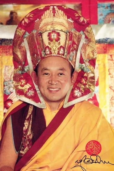 Sua Santità Drikung Kyabgon Chetsang Rinpoche: Guardiamo il modo in cui mente risponde ai fenomeni.