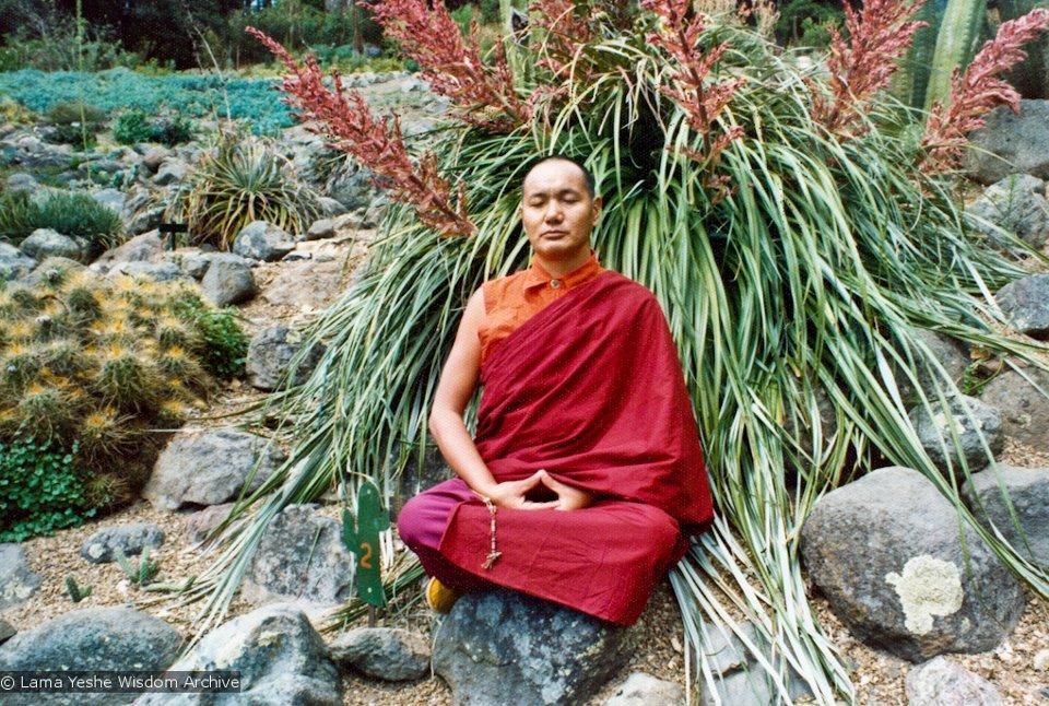 Lama Yesce: Bisogna analizzare costantemente la propria mente per eliminare il flusso della confusione e analizzare in che modo esiste la nostra natura relativa ed assoluta.