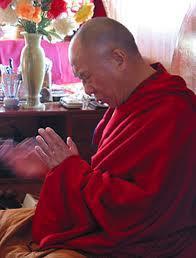 Sua Santità il Dalai Lama:Dovreste essere felici di aver ottenuto un tale corpo e decidere di non sprecare questa opportunità. Se vi sforzerete, riuscirete a ottenere grandi risultati.