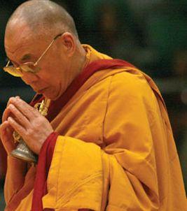Sua Santità il Dalai Lama:Dovreste riflettere su cosa vuol dire rinascere in uno stato di esistenza inferiore. Immaginate come vi sentireste e quale sarebbe il vostro destino!